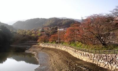 NCM_0686.JPG