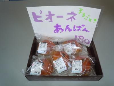 DSCN5006.JPG