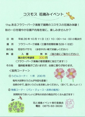 コスモス花摘み_261011.jpg