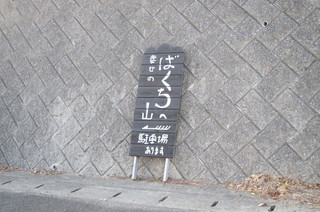 IMG_2881.JPG