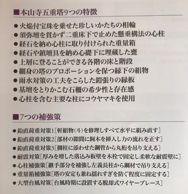 IMG_7505 (2).JPG